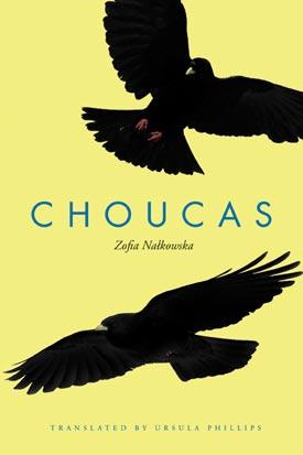 choucas-2