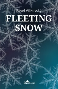FLEETING-SNOW-