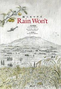 Rain Won't